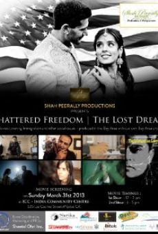 Ver película The Immigration Lawyer: Shattered Freedom