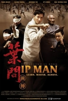 Ver película The Legend is Born - Ip Man