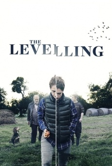 The Levelling online streaming