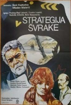 Ver película The Magpie Strategy