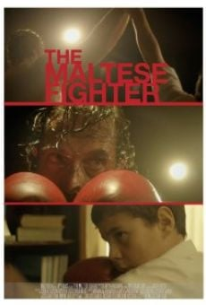 Ver película The Maltese Fighter