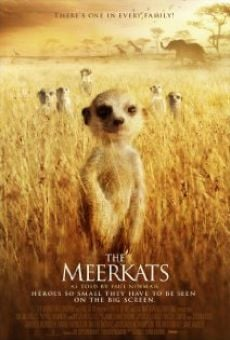 The Meerkats on-line gratuito