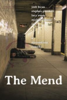 The Mend online streaming