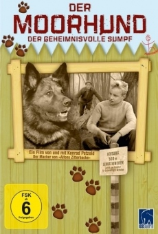 Ver película The Moorhound