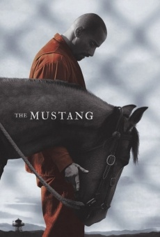 The Mustang online streaming
