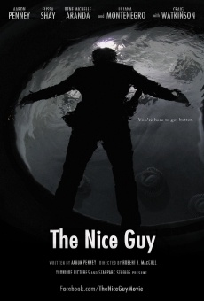 The Nice Guy online