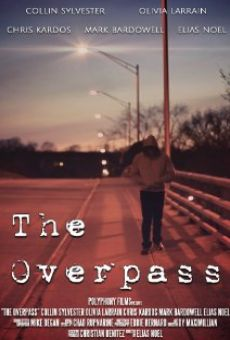 Ver película The Overpass