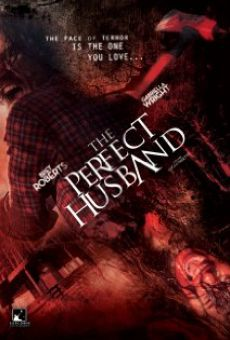Watch The Perfect Husband online stream