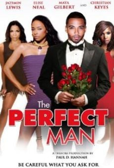 The Perfect Man online free