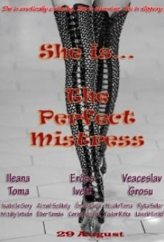 The Perfect Mistress en ligne gratuit