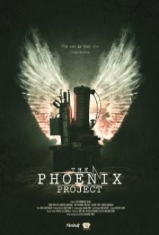 The Phoenix Project online
