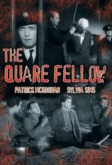 The Quare Fellow en ligne gratuit