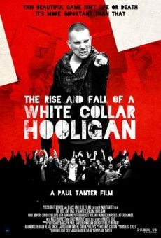 The Rise & Fall of a White Collar Hooligan online free