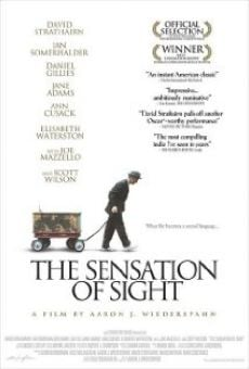 Ver película The Sensation of Sight
