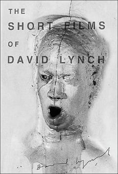 Ver película The Short Films of David Lynch