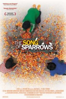 Ver película The Song Of Sparrows