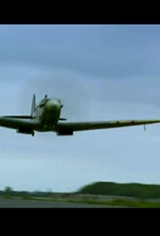 Ver película The Spitfire: Britain's Flying Past