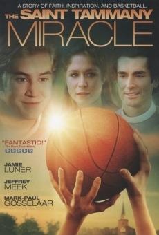 Ver película El milagro de St. Tammany