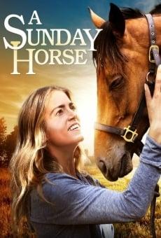 Ver película The Sunday Horse
