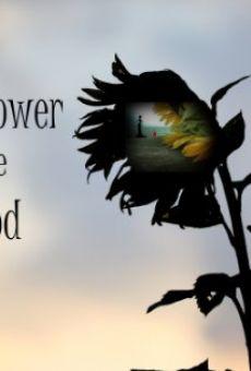 The Sunflower and the Sun God