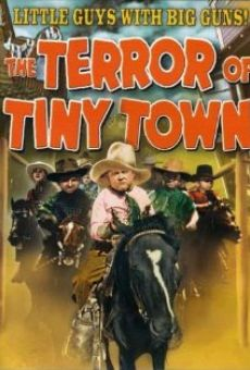 The Terror of Tiny Town online streaming