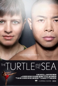 Ver película The Turtle and the Sea