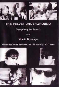 Película: The Velvet Underground and Nico: A Symphony of Sound