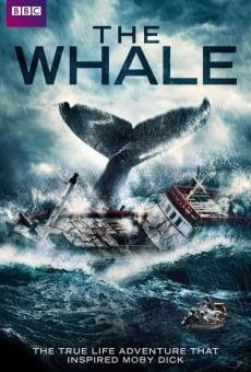 Ver película The Whale