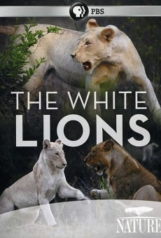 Ver película The White Lions