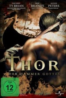 Ver película Thor: Hammer of the Gods