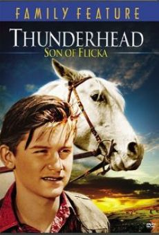 Thunderhead, son of Flicka online