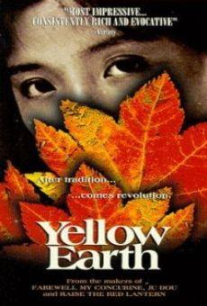 Ver película Tierra amarilla
