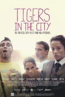 Tigre v meste on-line gratuito