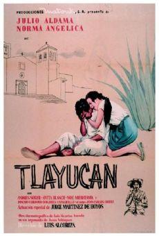 Tlayucan online