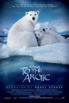 Ver película To the Arctic 3D