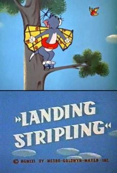 Tom & Jerry: Landing Stripling online