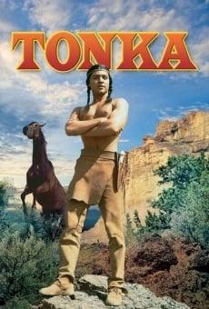 Ver película Tonka en La última batalla del general Custer