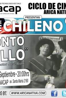 Tonto pillo on-line gratuito