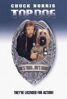 Ver película Top Dog, el perro sargento