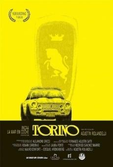 Ver película Torino