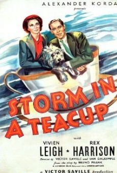 Storm in a Teacup on-line gratuito