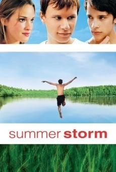 Ver película Tormenta de verano
