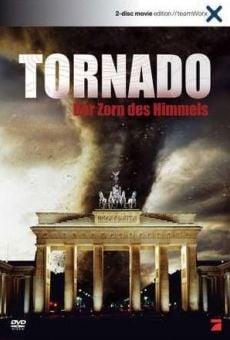 Tornado: La furia del cielo gratis