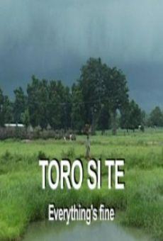 Ver película Toro si te