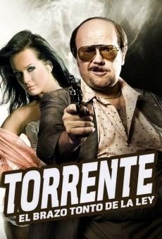 Ver película Torrente, el brazo tonto de la ley