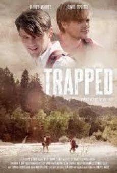 Ver película Trapped