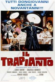 Trasplante a la italiana online gratis