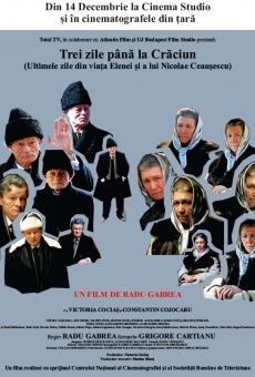Ver película Trei zile pâna la Craciun