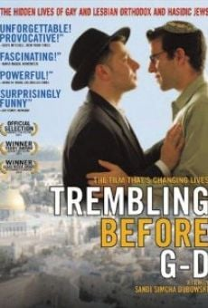 Película: Trembling Before G-d