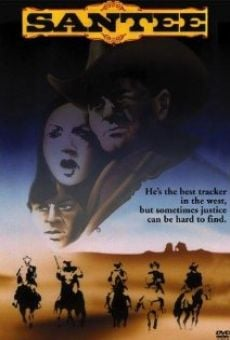 Ver película Tres flechas